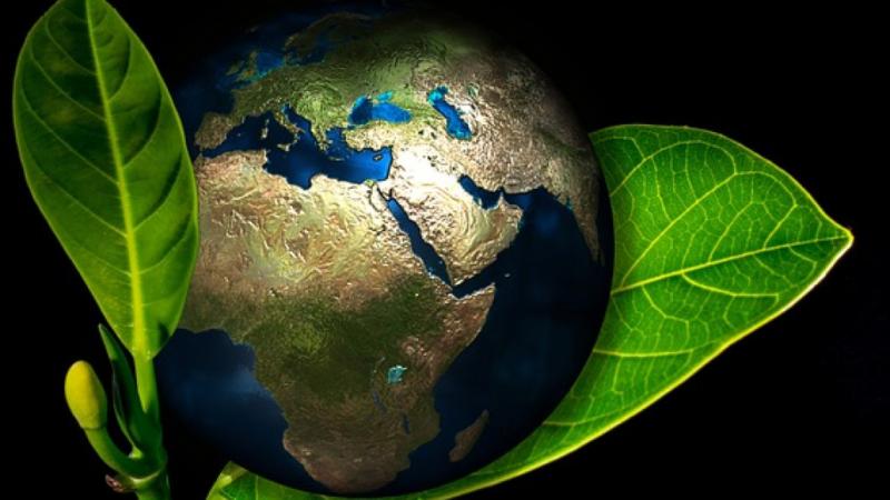 Miljøvenlig chefkontorstol